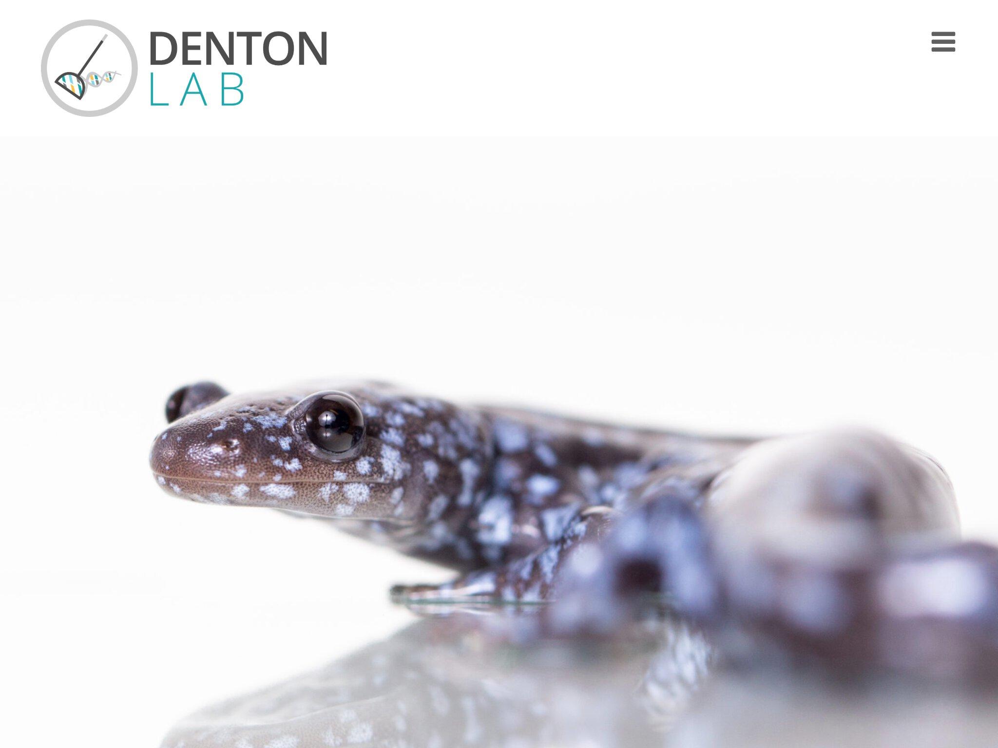 Denton lab