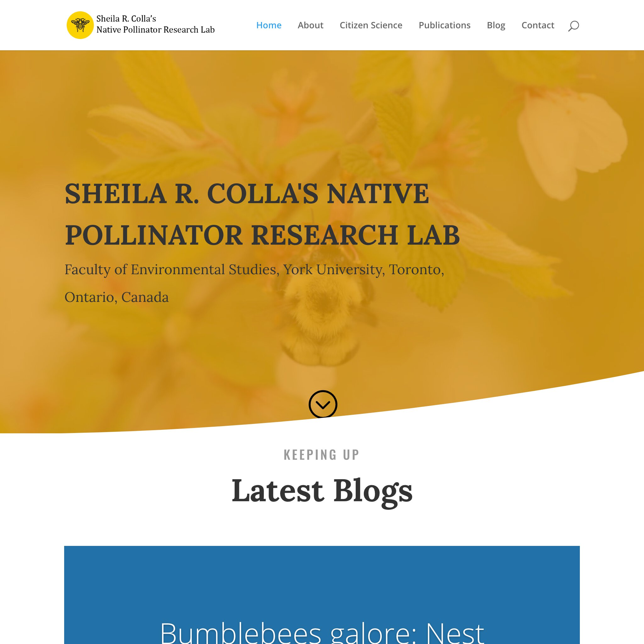 Native pollinator research lab