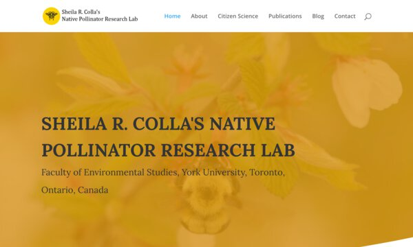 Native pollinator research lab
