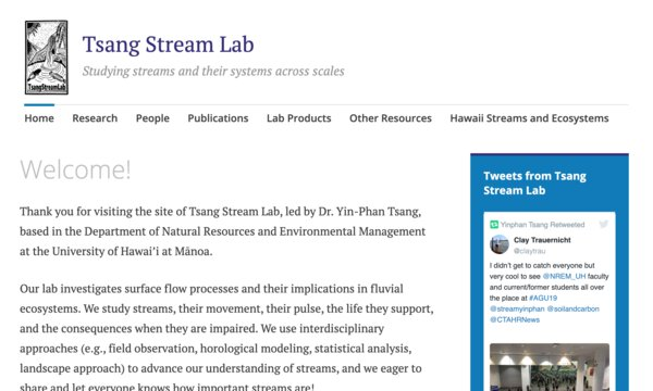 Tsang stream lab